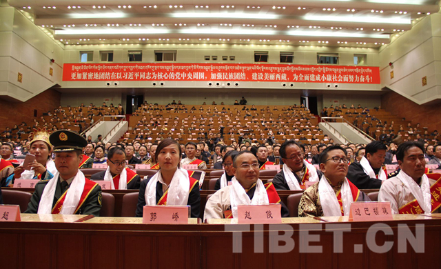 The 25 November Lhasa conference on 'village-based cadres team' program [Photo: Tibet.cn)